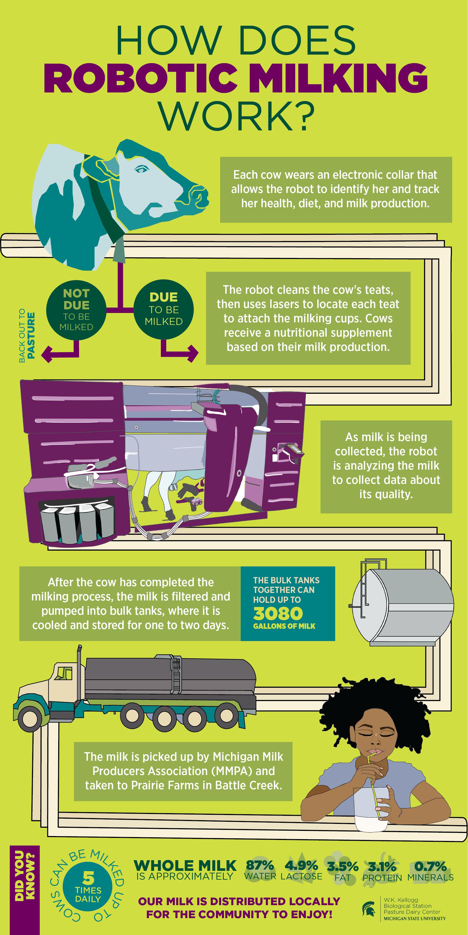 The Robotic Milking Process