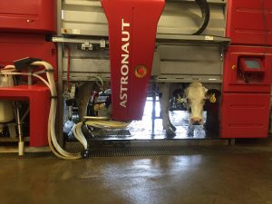 Cows at the Pasture Dairy Center with the Lely Robotic Milking